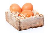 Saman, eski kutusunda, kahverengi yumurtaları — Stok fotoğraf