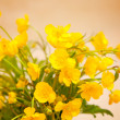 Stock Photo: Yellow buttercup flowers