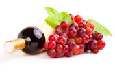 Bottle of red wine and grapes, isolated on white background. — Stock Photo