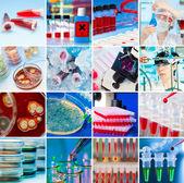 Collage di laboratorio — Foto Stock
