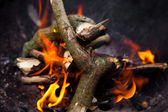 燃烧木材 — Stockfoto
