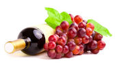 Bottle of red wine with grapes, white background — Stock Photo