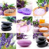 Lavendel collage met negen foto's, spa stenen — Stockfoto