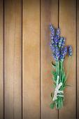 Um ramo de flores de lavanda sobre um fundo de madeira — Foto Stock