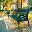 Stock Photo: Bench in the autumn park
