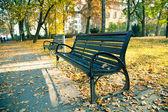 Bancada no parque outono — Fotografia Stock