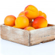 Ripe apricots in wooden box, Isolated on white backgroun — Stock Photo #29998051