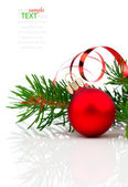 Christmas decoration isolated on white background — Fotografia Stock