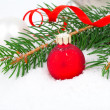 Covered with snow branch of a Christmas tree and red ball on sno — Stock Photo