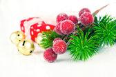 Christmas wreath on white background — Stockfoto