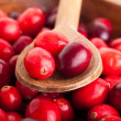 Stock Photo: Cranberries in wooden bowl