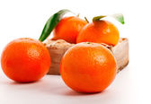 Tangerine. A wood crate full of Clementine Mandarin Oranges. — Stock Photo