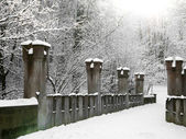 Old stone bridge in the winter, germany Gera. Osterstein Castle — Stock Photo