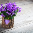 Blue campanulflowers for Valentine's Day on wooden background — Stock Photo #38661241