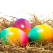 Easter eggs in nest — Stock Photo #40015023
