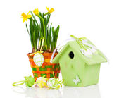 Easter eggs with birdhouse, on a white background — Stock Photo