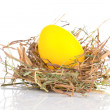 Easter Egg in a nest on a white background — Stock Photo