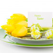 Easter eggs and blank for text in a plate, on a white background — Stock Photo