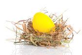 在白色背景上的巢里的复活节彩蛋 — 图库照片