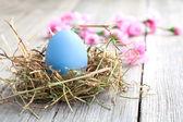 Velikonoční vejce na dřevěné pozadí — Stock fotografie