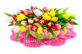Bunch of spring tulips isolated on white — Stock Photo