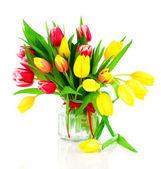 Tulips flowers on a white background — Stock Photo