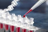 Ubes for DNA amplification by PCR — Stock Photo