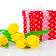 Yellow tulip flowers with red polka-dot gift box. on white backg — Stock Photo