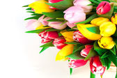 Spring tulips on white background. happy mothers day, romantic s — Foto de Stock