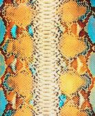 Fondo de piel de serpiente — Foto de Stock