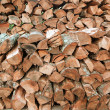 Stock Photo: Fire Wood