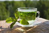 Mint broth in a glass cup — Stock Photo