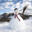 Bonhomme de neige — Photo