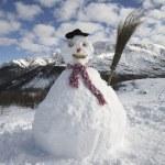 Snowman — Stock Photo #29869337