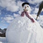 雪だるま — ストック写真 #29869353