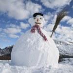Snowman — Stock Photo #29869385