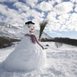 Bonhomme de neige — Photo #29869425