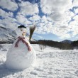 Bonhomme de neige — Photo #29869463