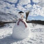 Snowman — Stock Photo #29869479