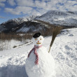 Bonhomme de neige — Photo #29869511
