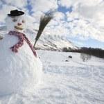 Snowman — Stock Photo #29869635