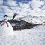 Snowman — Stock Photo #29869683