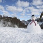 Snowman — Stock Photo #29869749
