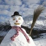 Snowman — Stock Photo #29869963