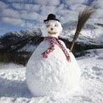Snowman — Stock Photo #29870051