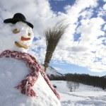 Snowman — Stock Photo #29870099