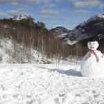 Snowman — Stock Photo #29870525