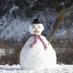 Snowman — Stock Photo #29870593