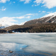 Mountain landscape, lake frozen — Stock Photo #49848769