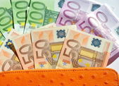 Wallet Full of Euro Money — Stockfoto
